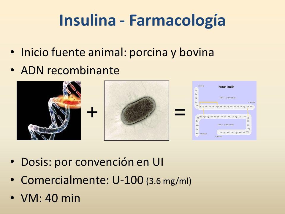 Insulina - Farmacología