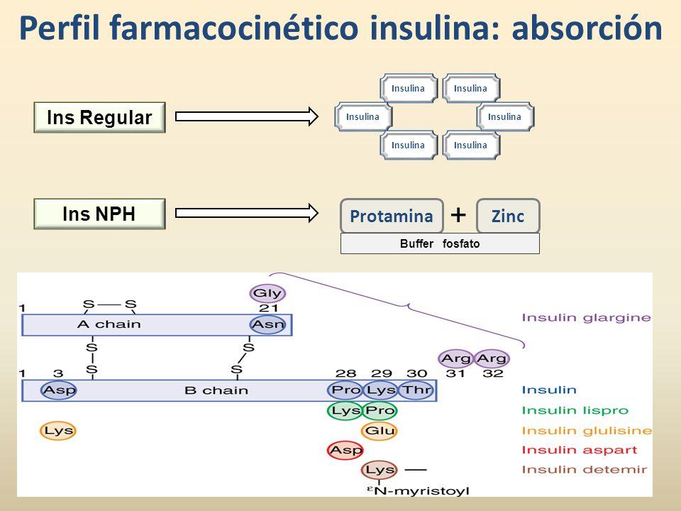 Perfil farmacocinético insulina: absorción