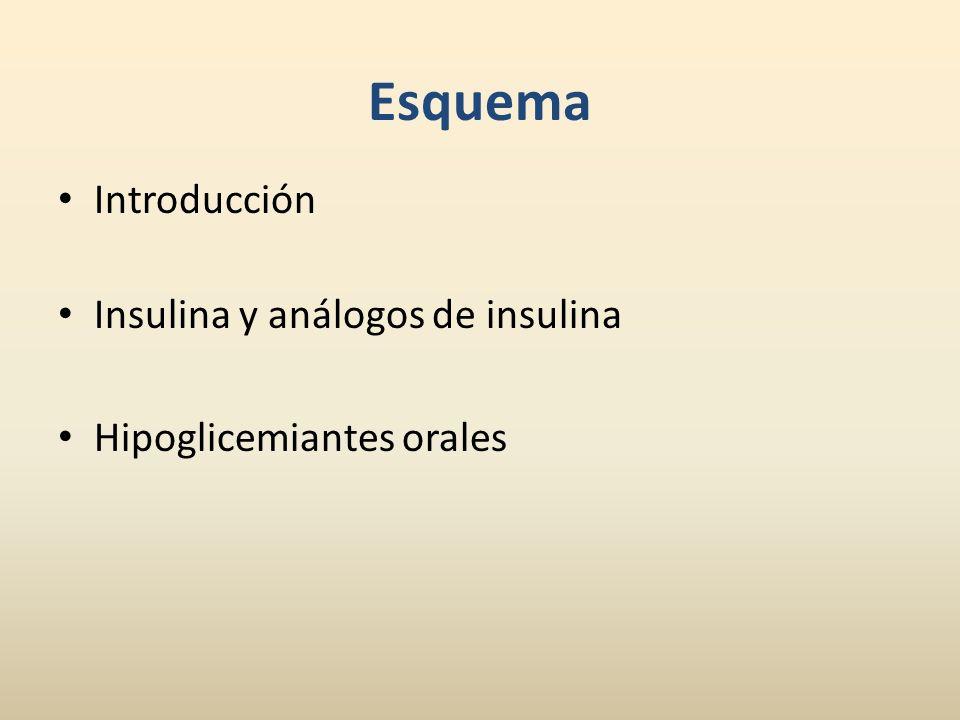 Esquema Introducción Insulina y análogos de insulina
