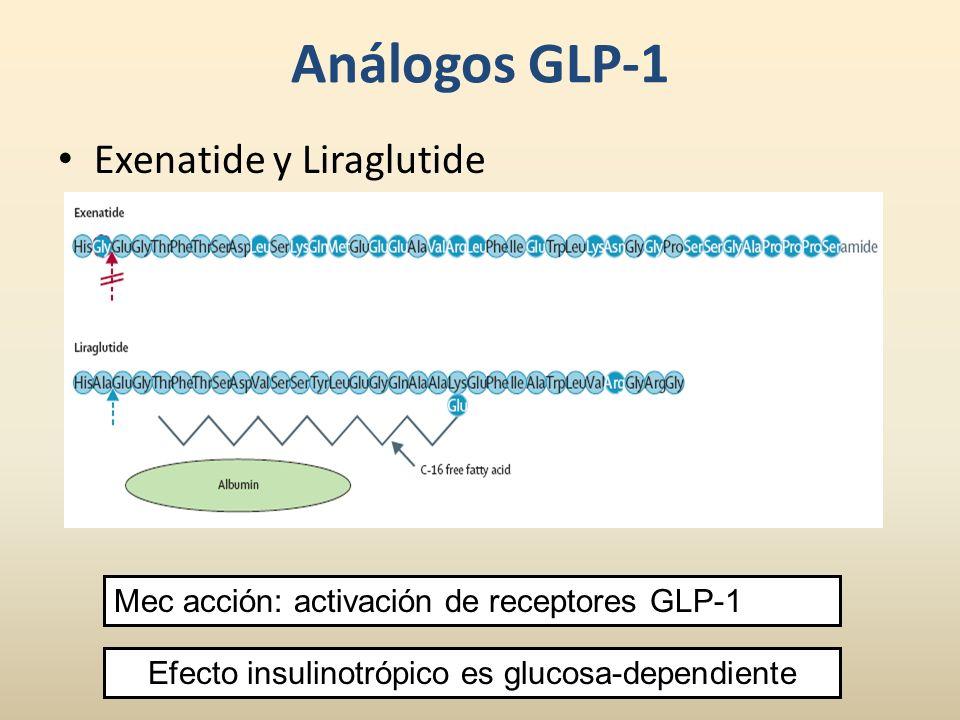 Efecto insulinotrópico es glucosa-dependiente