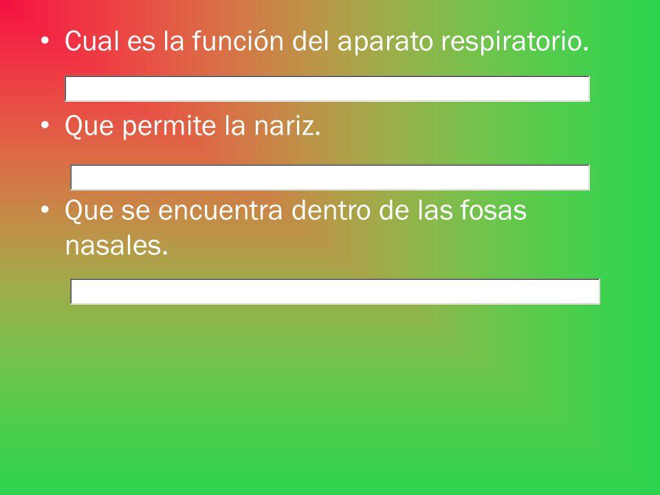 Cual es la función del aparato respiratorio.