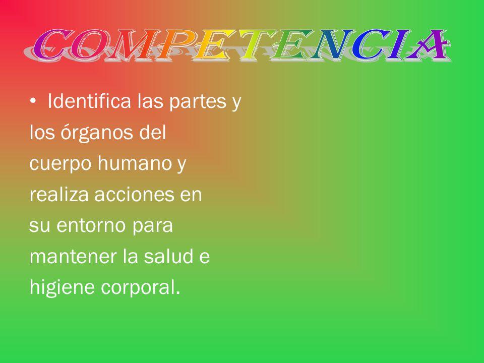 COMPETENCIA Identifica las partes y. los órganos del. cuerpo humano y. realiza acciones en. su entorno para.