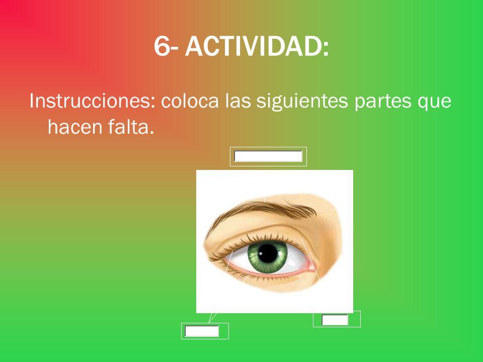 6- ACTIVIDAD: Instrucciones: coloca las siguientes partes que hacen falta.