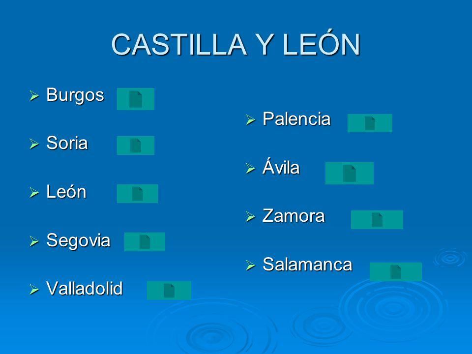 CASTILLA Y LEÓN Burgos Palencia Soria Ávila León Zamora Segovia