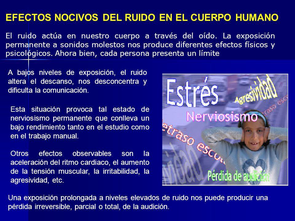 EFECTOS NOCIVOS DEL RUIDO EN EL CUERPO HUMANO