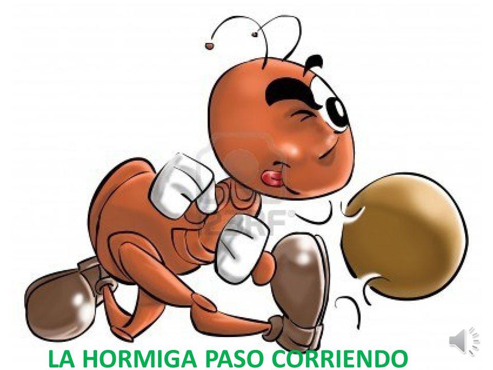 LA HORMIGA PASO CORRIENDO