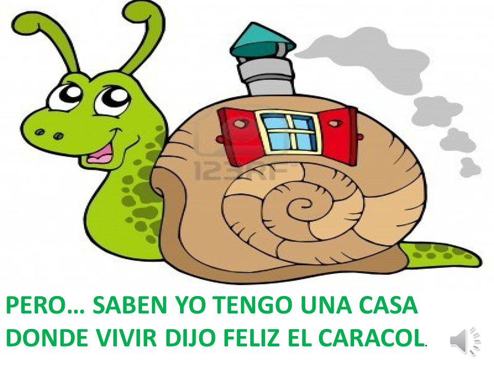 PERO… SABEN YO TENGO UNA CASA DONDE VIVIR DIJO FELIZ EL CARACOL.