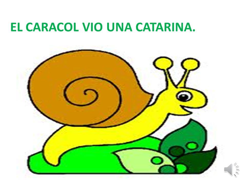 EL CARACOL VIO UNA CATARINA.