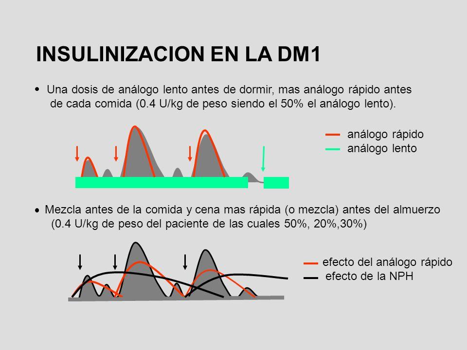 INSULINIZACION EN LA DM1
