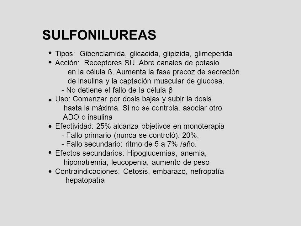 SULFONILUREAS Tipos: Gibenclamida, glicacida, glipizida, glimeperida