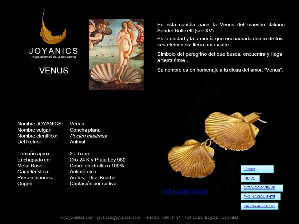 En esta concha nace la Venus del maestro italiano Sandro Botticelli (sec.XV)
