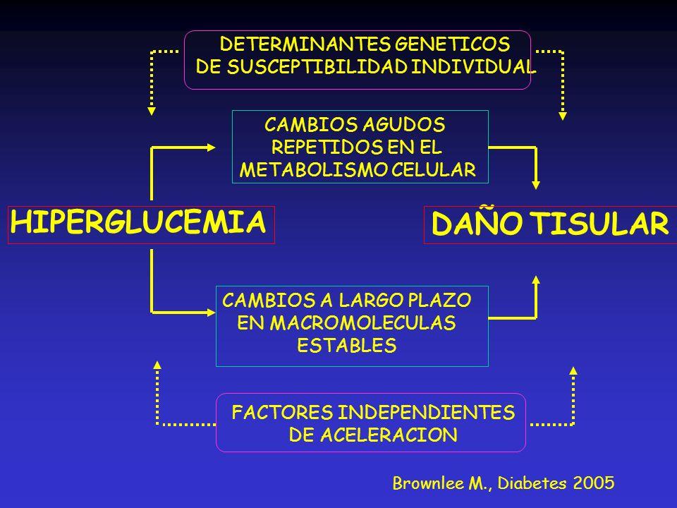 HIPERGLUCEMIA DAÑO TISULAR DETERMINANTES GENETICOS