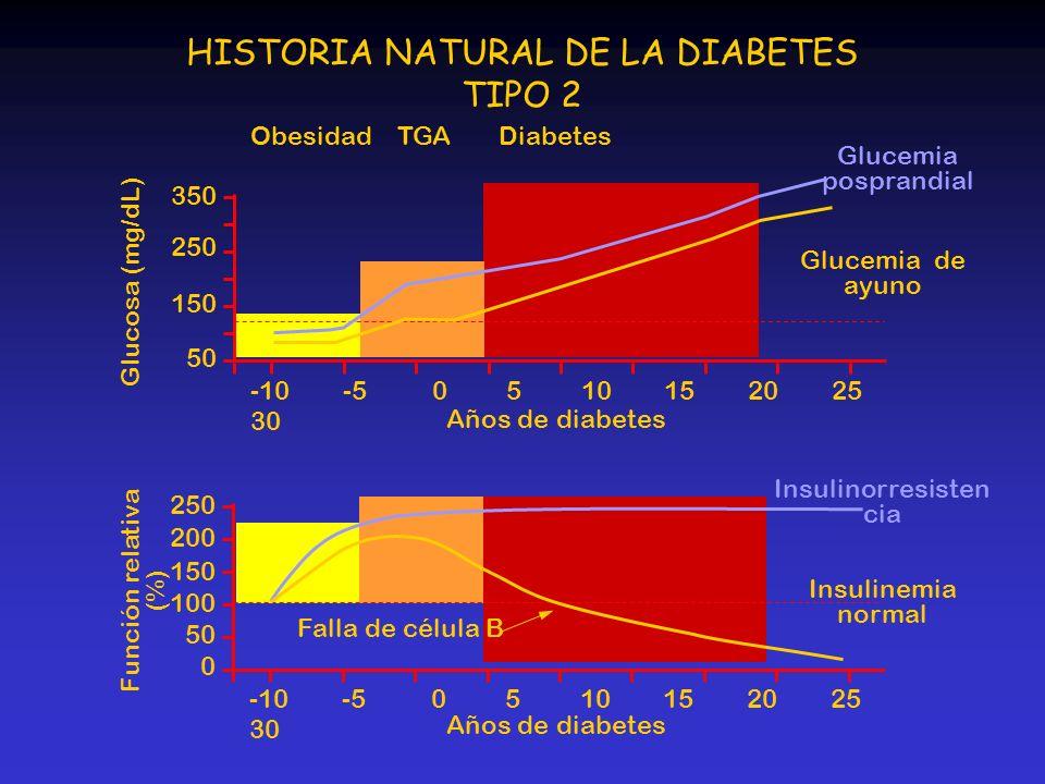 HISTORIA NATURAL DE LA DIABETES TIPO 2