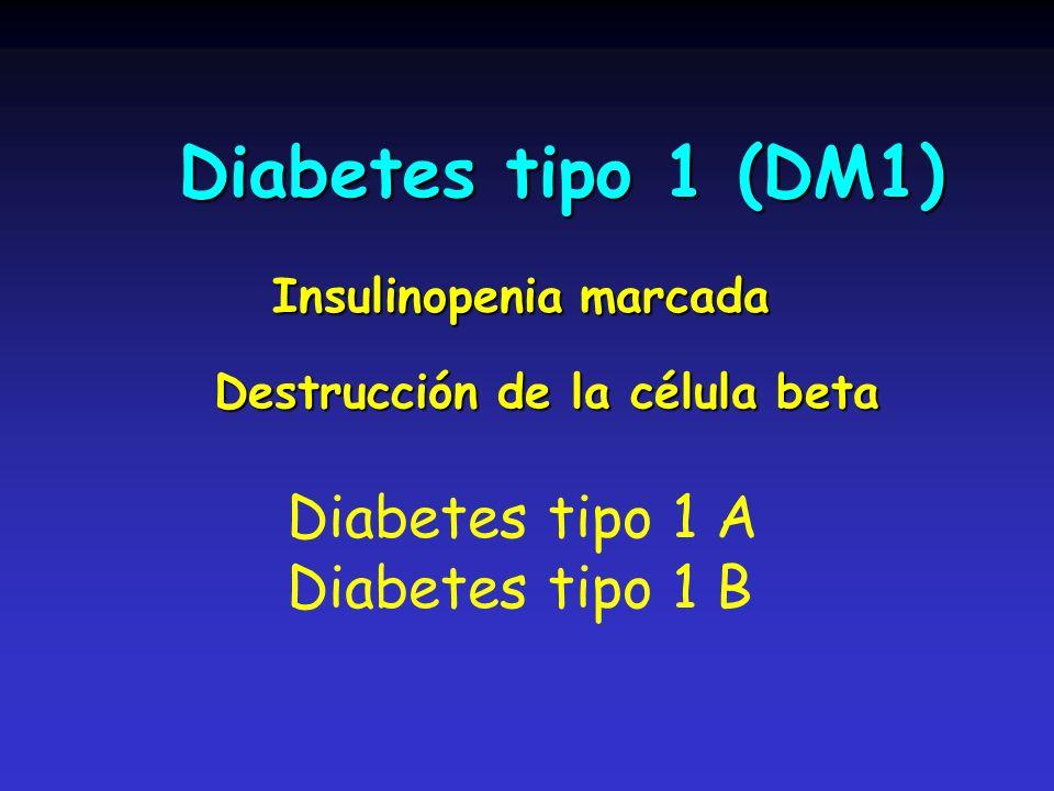 Diabetes tipo 1 (DM1) Diabetes tipo 1 A Diabetes tipo 1 B