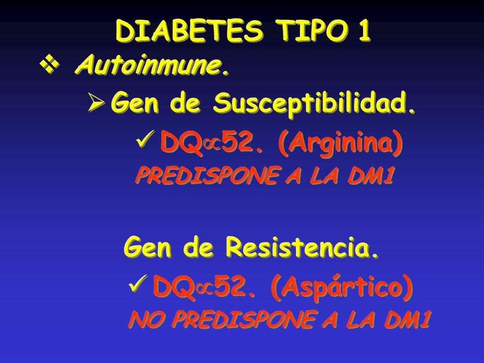 DIABETES TIPO 1 Autoinmune. Gen de Susceptibilidad. DQ52. (Arginina)