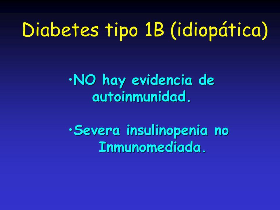 Diabetes tipo 1B (idiopática)