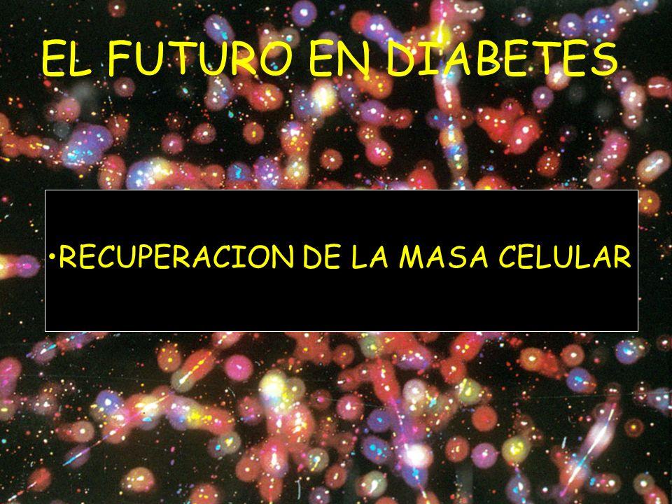 EL FUTURO EN DIABETES RECUPERACION DE LA MASA CELULAR