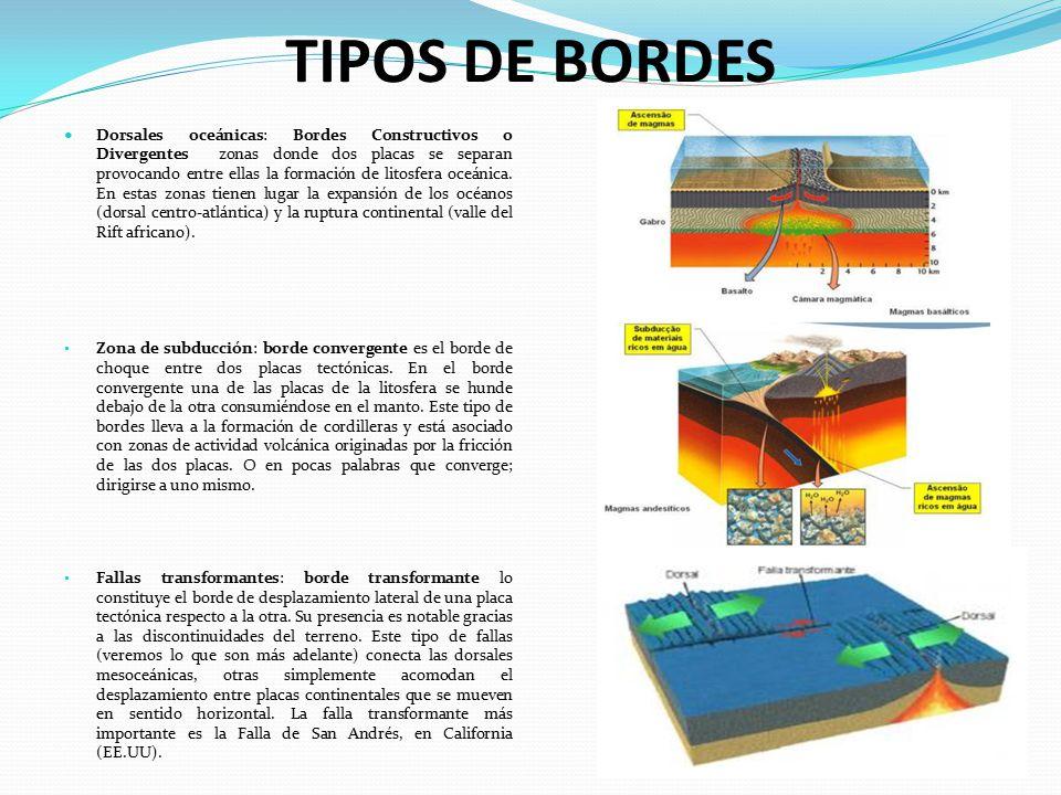 TIPOS DE BORDES