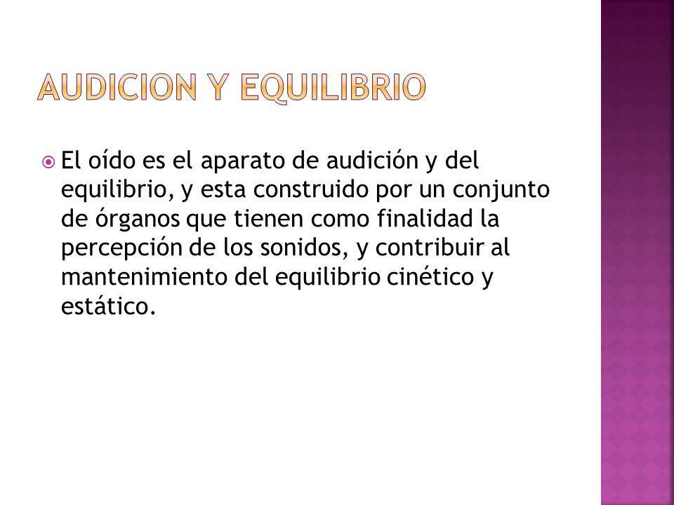 AUDICION Y EQUILIBRIO