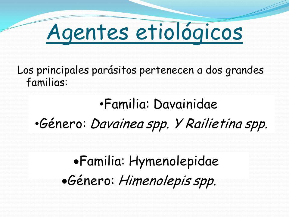 Agentes etiológicos Familia: Davainidae