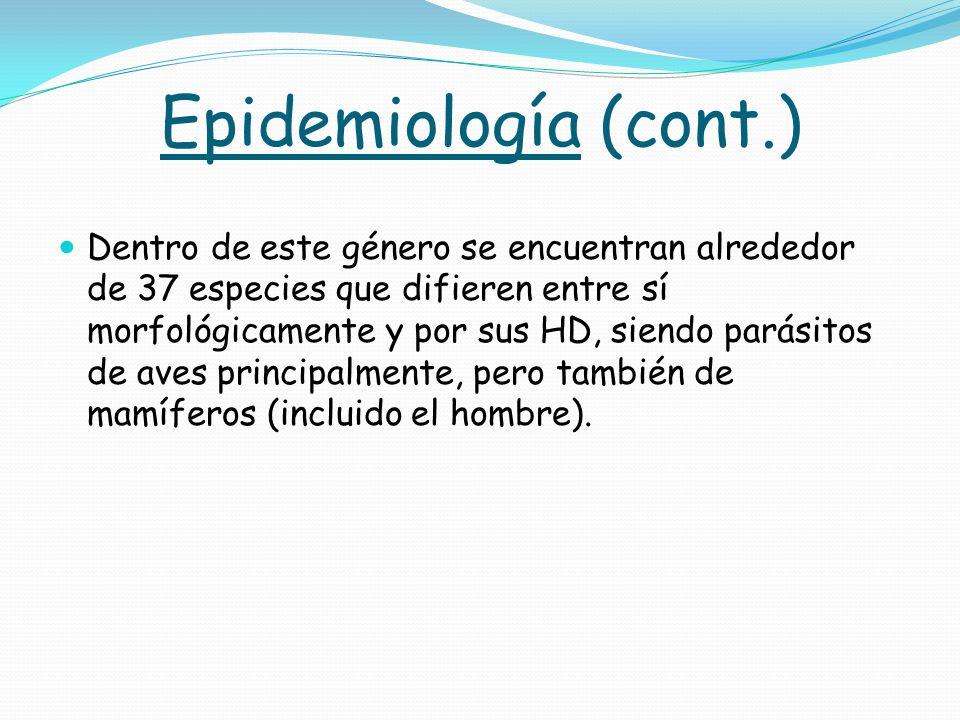 Epidemiología (cont.)