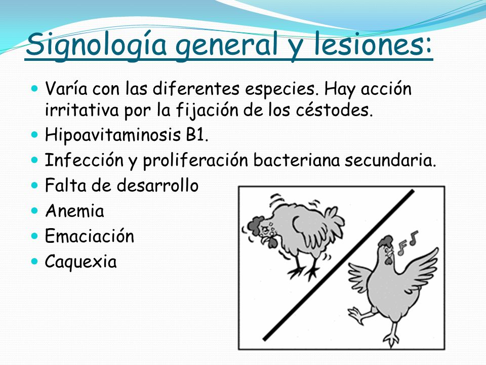 Signología general y lesiones:
