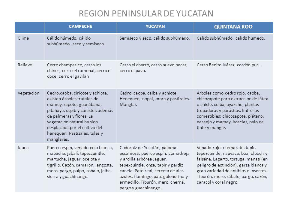 REGION PENINSULAR DE YUCATAN