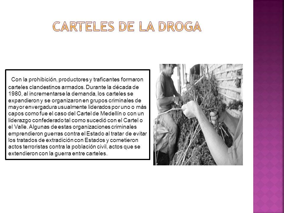 CARTELES DE LA DROGA