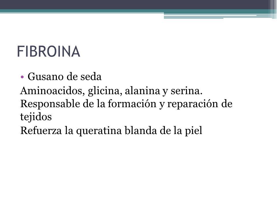 FIBROINA Gusano de seda