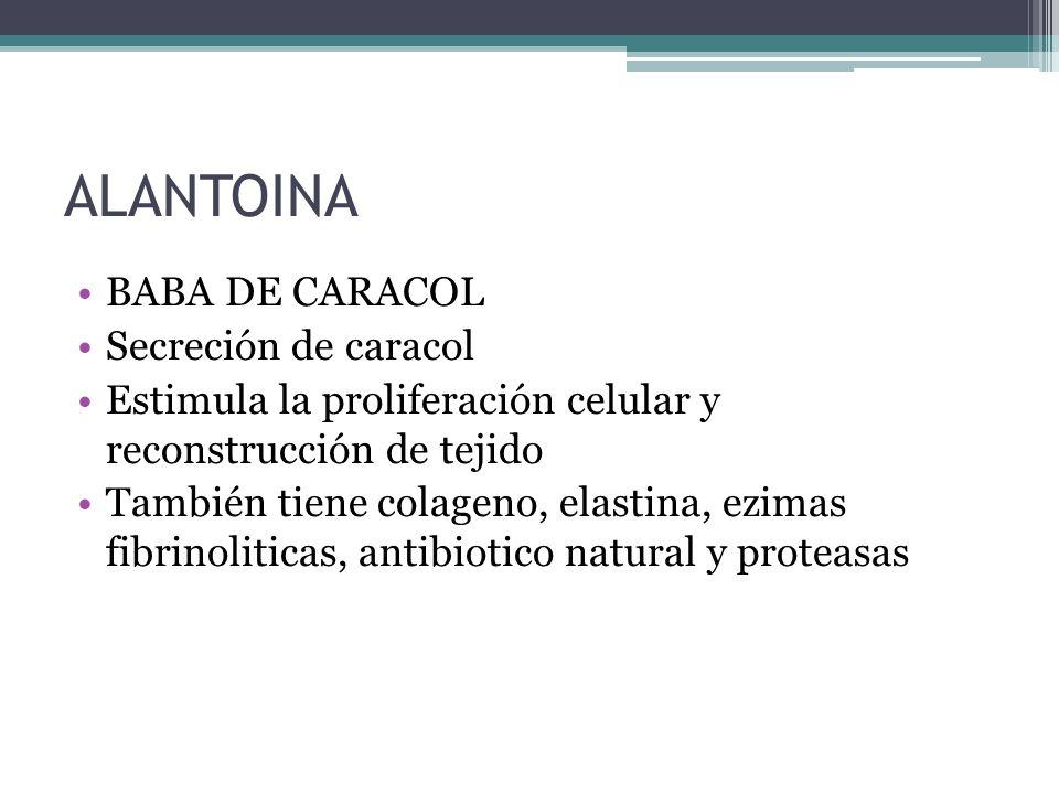 ALANTOINA BABA DE CARACOL Secreción de caracol