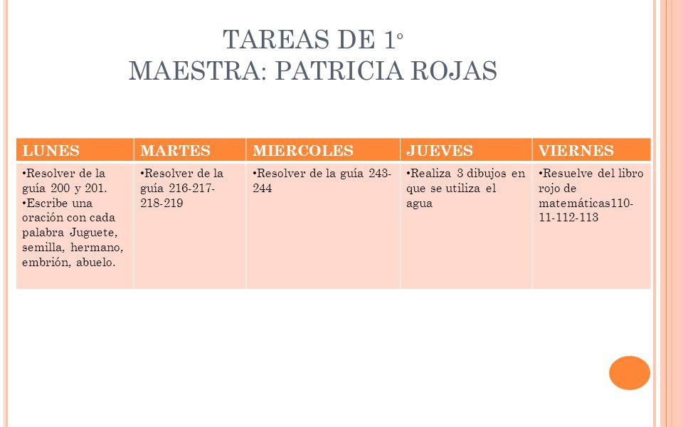 TAREAS DE 1º MAESTRA: PATRICIA ROJAS