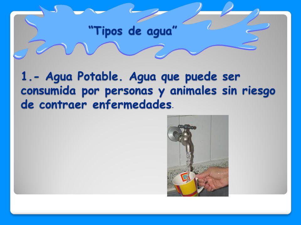Tipos de agua 1.- Agua Potable.
