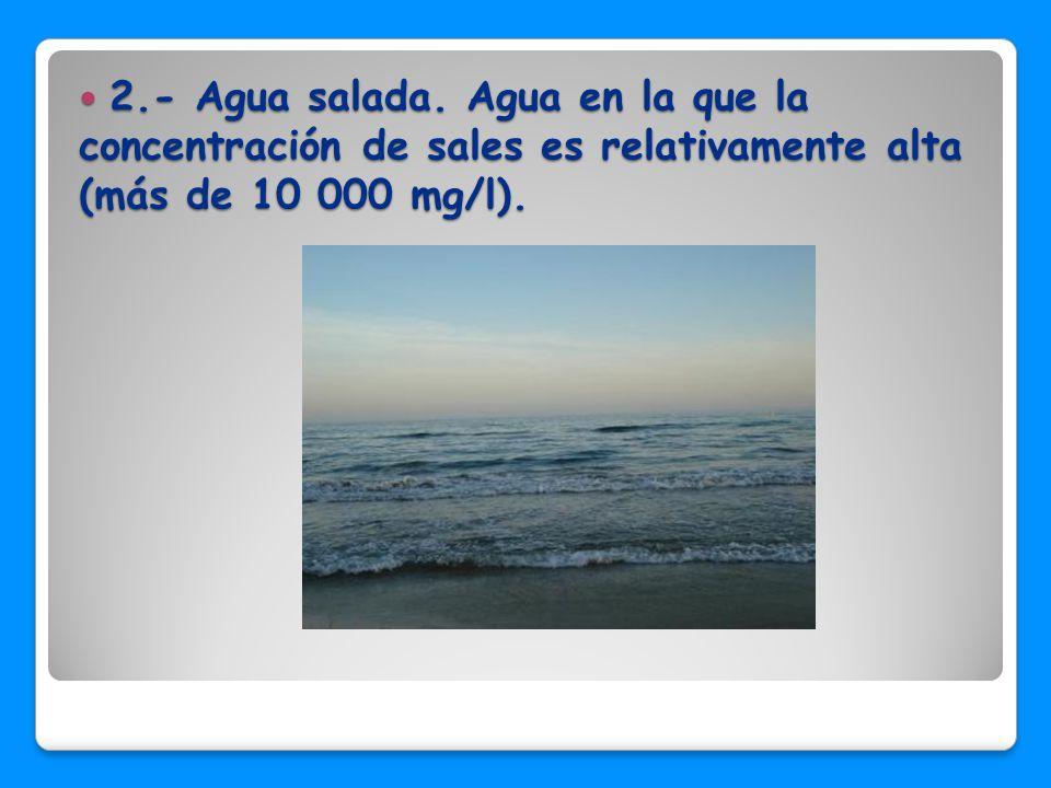 2.- Agua salada.