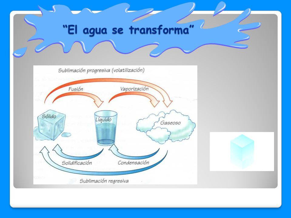 El agua se transforma