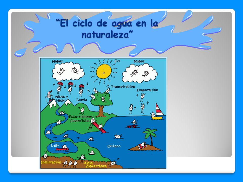 El ciclo de agua en la naturaleza