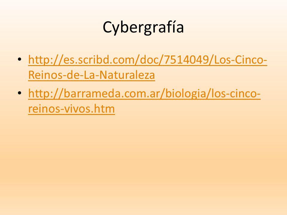Cybergrafía http://es.scribd.com/doc/7514049/Los-Cinco-Reinos-de-La-Naturaleza.