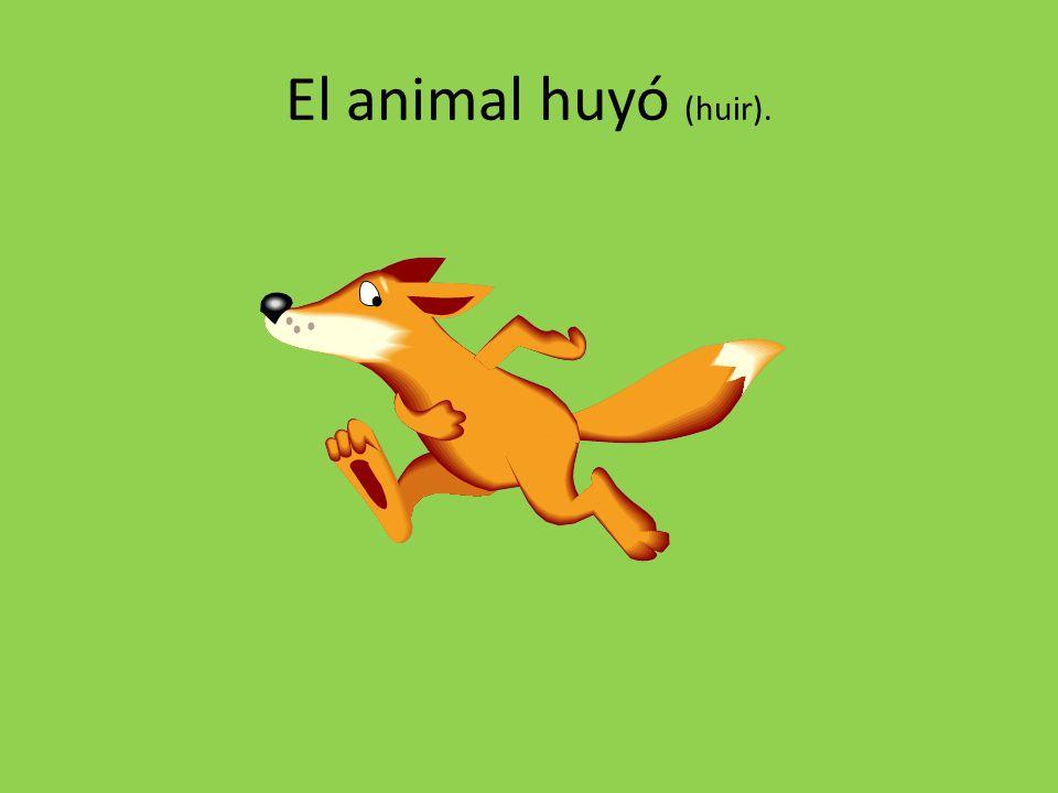 El animal huyó (huir).