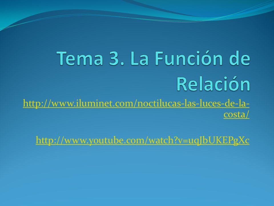 Tema 3. La Función de Relación