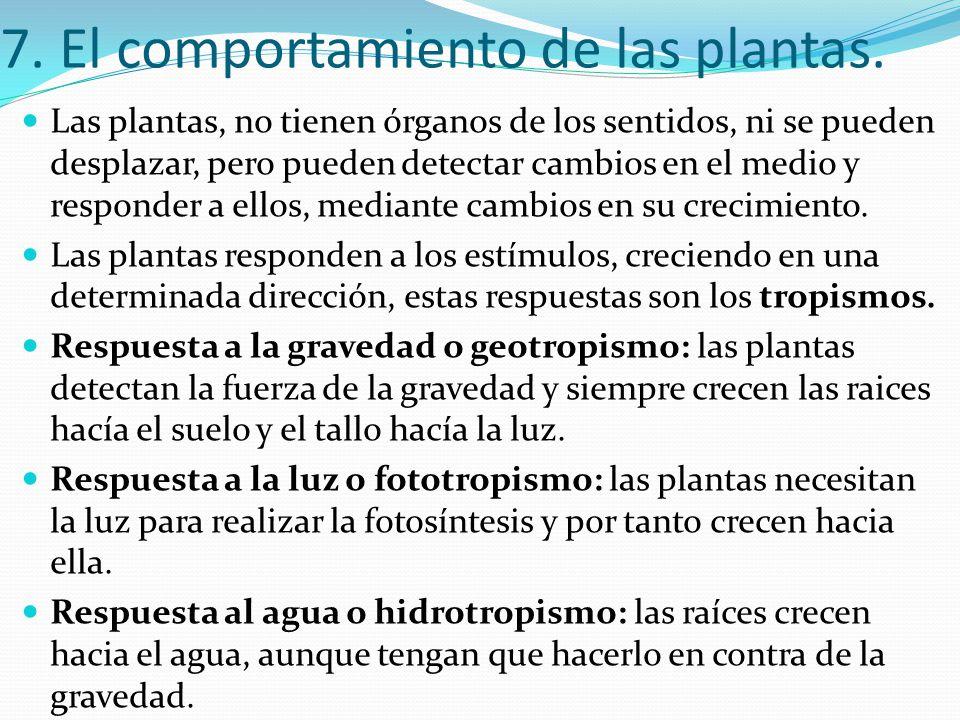 7. El comportamiento de las plantas.