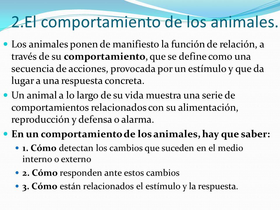 2.El comportamiento de los animales.
