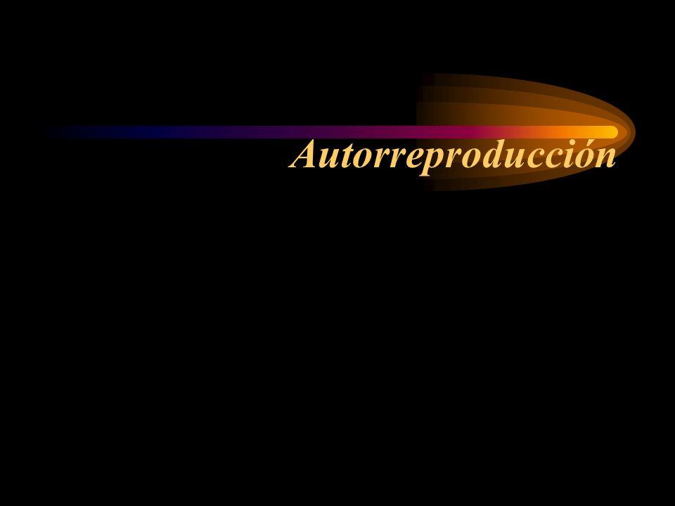 Autorreproducción