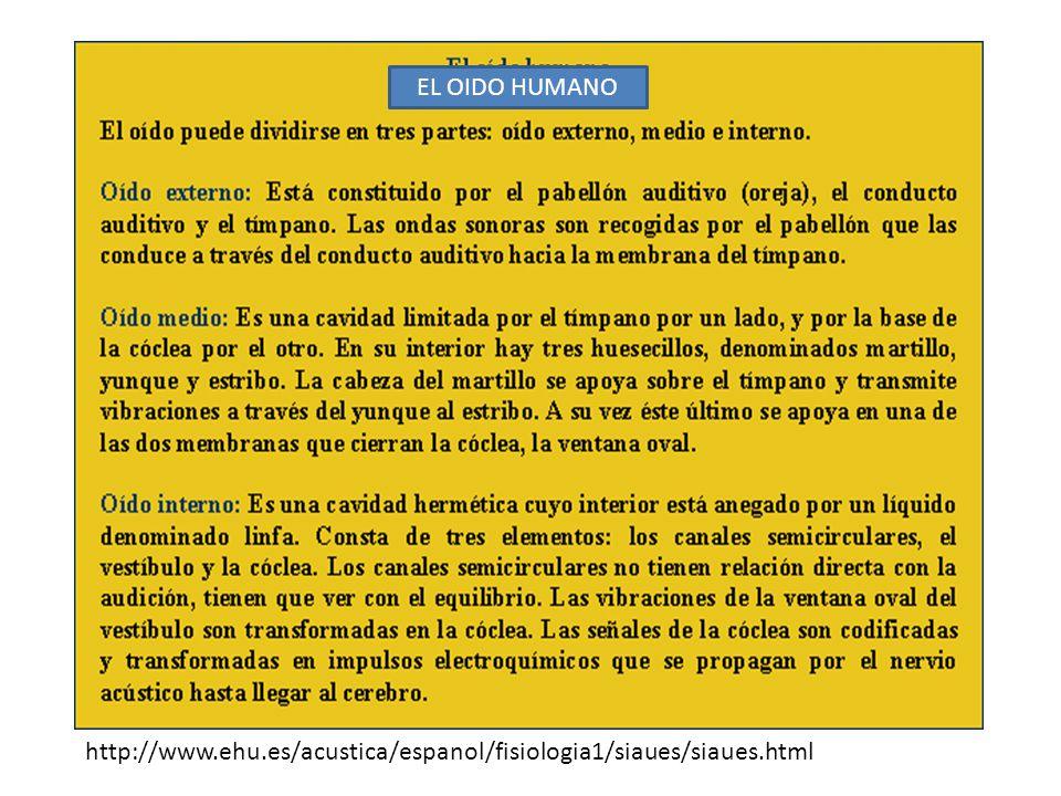 EL OIDO HUMANO http://www.ehu.es/acustica/espanol/fisiologia1/siaues/siaues.html