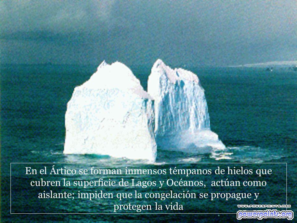 En el Ártico se forman inmensos témpanos de hielos que cubren la superficie de Lagos y Océanos, actúan como aislante; impiden que la congelación se propague y protegen la vida