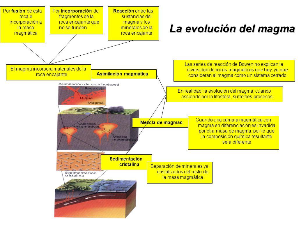 Asimilación magmática Sedimentación cristalina