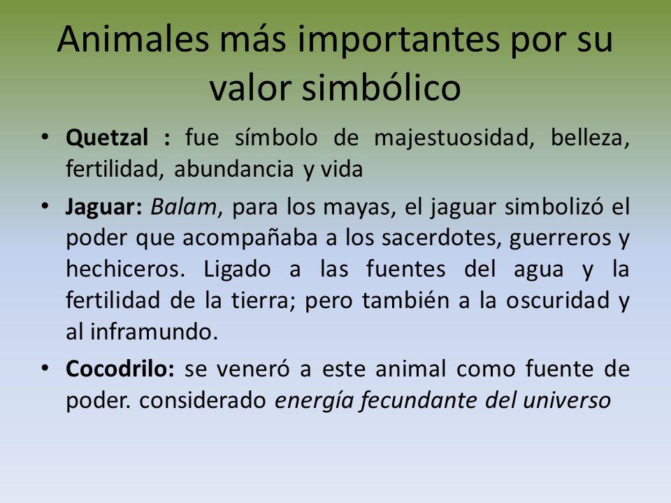 Animales más importantes por su valor simbólico