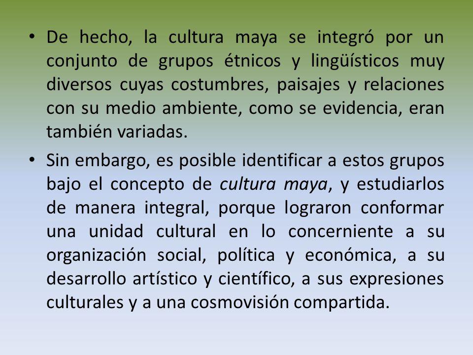 De hecho, la cultura maya se integró por un conjunto de grupos étnicos y lingüísticos muy diversos cuyas costumbres, paisajes y relaciones con su medio ambiente, como se evidencia, eran también variadas.