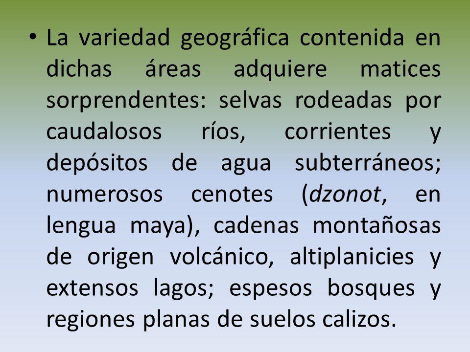 La variedad geográfica contenida en dichas áreas adquiere matices sorprendentes: selvas rodeadas por caudalosos ríos, corrientes y depósitos de agua subterráneos; numerosos cenotes (dzonot, en lengua maya), cadenas montañosas de origen volcánico, altiplanicies y extensos lagos; espesos bosques y regiones planas de suelos calizos.