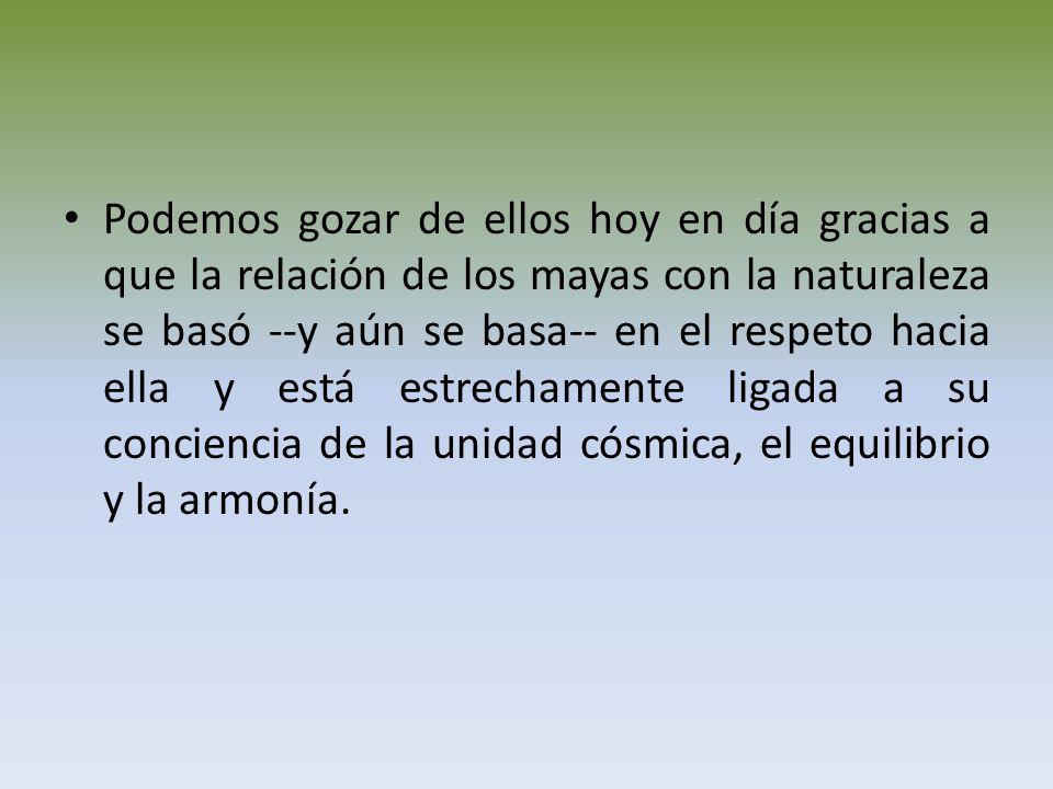 Podemos gozar de ellos hoy en día gracias a que la relación de los mayas con la naturaleza se basó --y aún se basa-- en el respeto hacia ella y está estrechamente ligada a su conciencia de la unidad cósmica, el equilibrio y la armonía.