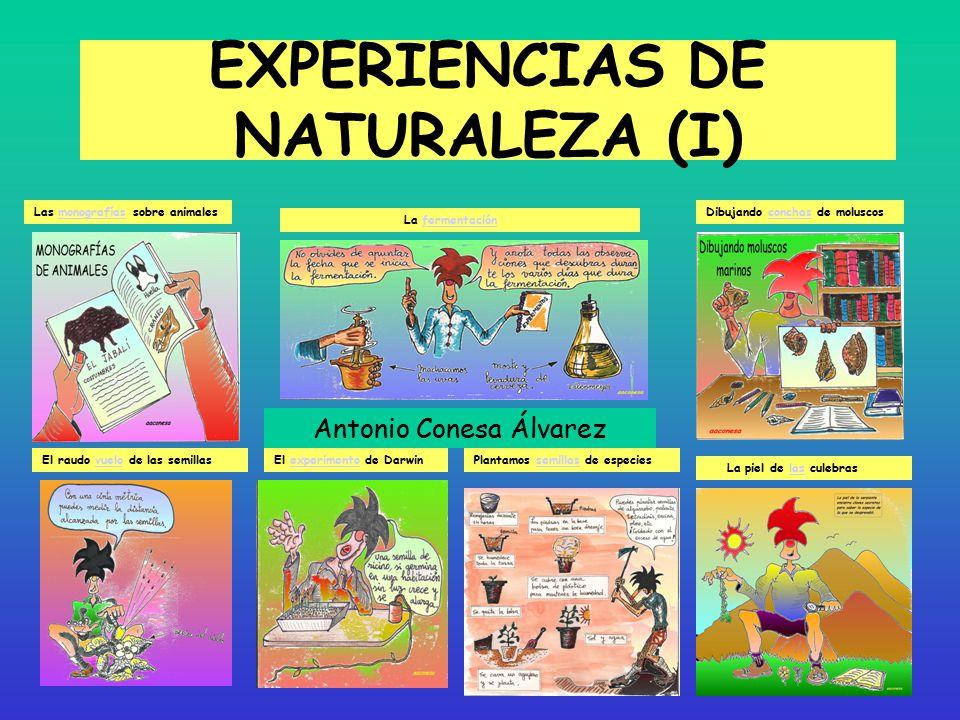 EXPERIENCIAS DE NATURALEZA (I)