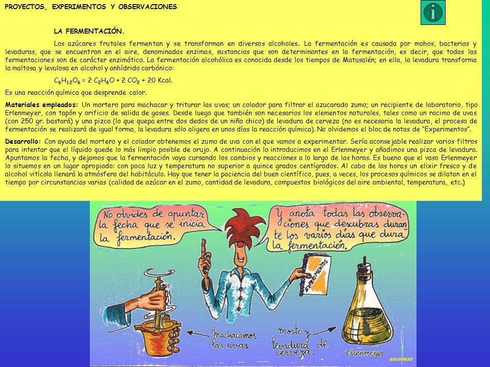 PROYECTOS, EXPERIMENTOS Y OBSERVACIONES